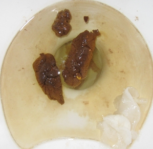 Image Result For Automatic Flush Toilet Inventor